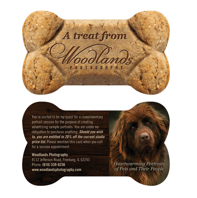 Dog bone card archives visual lure woodlands photography pet promo card well after we received print quotes the custom diecut business reheart Image collections
