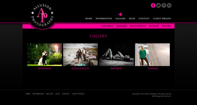 Chicago IL WordPress web design gallery