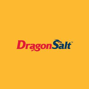 Logo options for a St. Louis Salt Company.