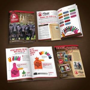 Ritchey catalog graphic design