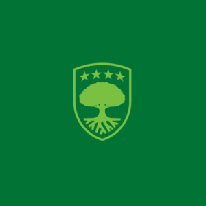 All Stars Tree Solutions logo