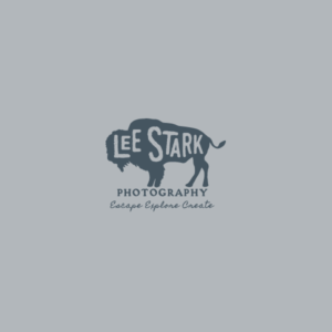 Lee Stark Photography logo design option
