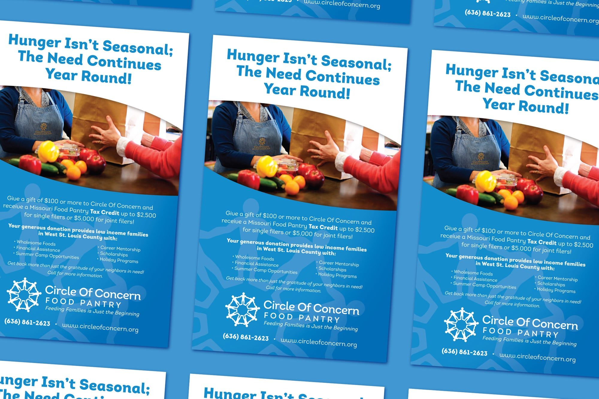 Hunger Isn't Seasonal Ad Design
