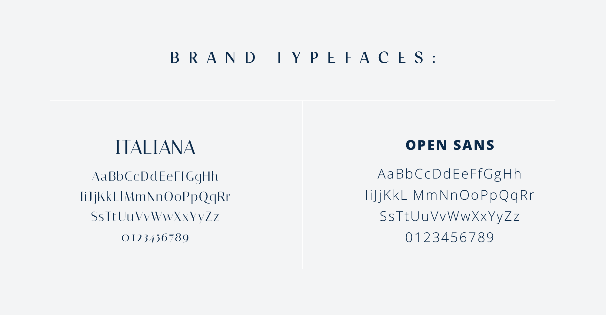 bortz-law-brand-fonts